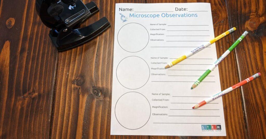 microscope observation free worksheet